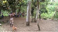 Азия и Океания Сезон-1 Вануату. Воскрешение традиций. Фильм 3