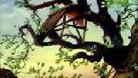Большая энциклопедия природы Сезон-1 Серия 28