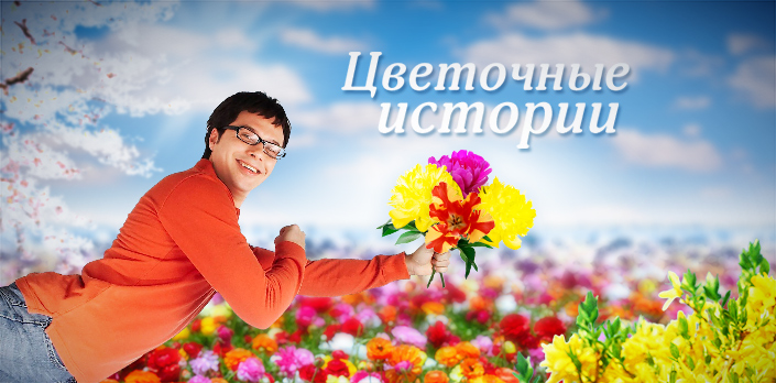 Цветочные истории смотреть