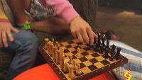 Даёшь молодёжь! Растаманы Кекс и Укроп Интеллектуальная игра