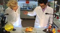 Даёшь молодёжь! Учёные – Роберт и Анна Нано-курица