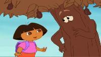 Даша-путешественница Сезон-1 Шоколадное дерево