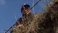 Диалоги о рыбалке. Народный проект Сезон-1 Лещ. Подмосковье. Москва-река