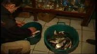 Диалоги о рыбалке. Народный проект Сезон-1 Трехречье. Зима-лето