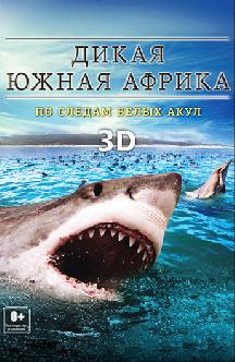 ДикаяЮжная Африка: По следам белых акул смотреть