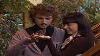 Дом 2. Город любви Сезон 24 1981 дня