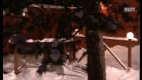 ДОМ-2. После заката Сезон 73 Ночной эфир 2456 дня