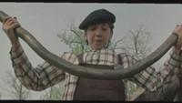 Ералаш 1 сезон 44 серия