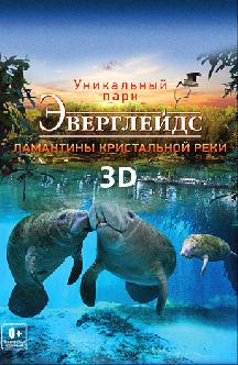 Эверглейдс 3D: Ламантины Кристальной реки смотреть