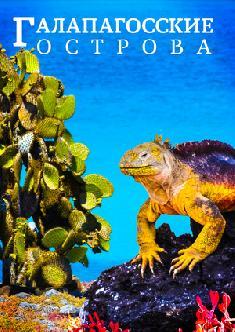 Галапагосские острова смотреть