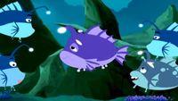Гавань ракушек 1 сезон 10 серия. Семья блестящих рыб в ловушке