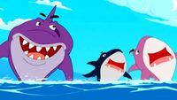 Гавань ракушек 1 сезон 18 серия. Акулы есть акулы