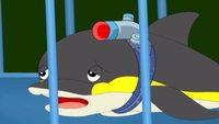 Гавань ракушек 2 сезон 49 серия. Пропавший дельфин. Часть 2