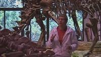 Хочу верить 4 сезон Драконы. А может, они динозавры? Часть 2