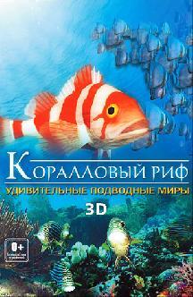 Коралловый риф: удивительные подводные миры 3D смотреть