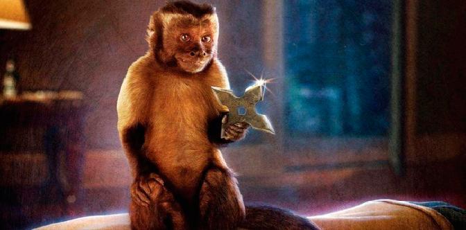 Кто твоя обезьянка? смотреть