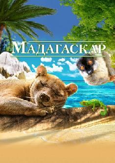 Мадагаскар смотреть