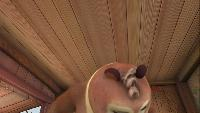 Медведи-соседи Сезон-2 Кто сидит в носилках?