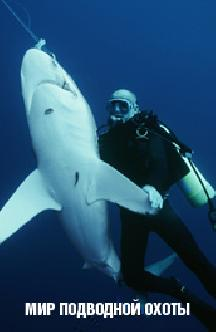 Мир подводной охоты смотреть