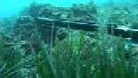 Мир подводной охоты Сезон-1 Соревнования в Хорватии