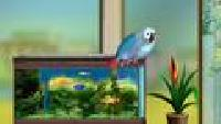 Мои домашние питомцы Сезон-1 Попугай