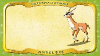 Мультипедия животных Английский алфавит Английский алфавит - Letter A - Antelope