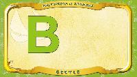 Мультипедия животных Английский алфавит Английский алфавит - Letter B - Beetle
