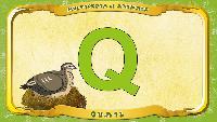 Мультипедия животных Английский алфавит Английский алфавит - Letter Q - Quail