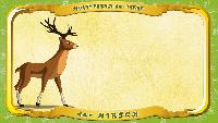 Мультипедия животных Немецкий алфавит Немецкий алфавит - Buchstabe H - der Hirsch