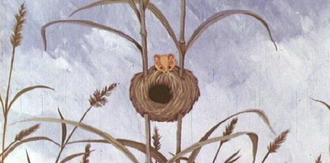 Мышонок Пик смотреть