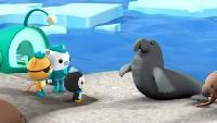 Октонавты Сезон-1 Октонавты и огромный морской слон