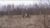 Основной инстинкт (2009) Сезон-1 Смоленская область. Бобры. Вальдшнеп