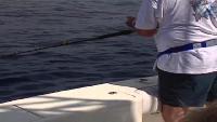 Планета рыбака Сезон-1 Калифорнийский залив