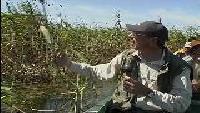 Планета рыбака Сезон-1 Рыбалка в дельте Волги