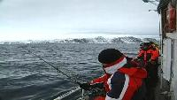 Планета рыбака Сезон-1 Треска. Норвегия