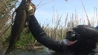 Подводные просторы России Сезон-1 Астрахань