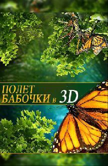 Полет бабочки 3D смотреть