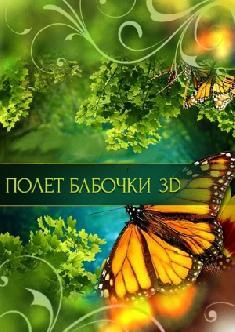 Полет бабочки смотреть