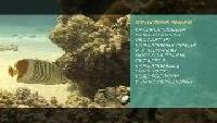 Предельная глубина (2009) Сезон-1 Ангелы хитинозубые