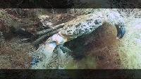 Предельная глубина (2009) Сезон-1 Экология Крыма