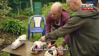 Реальные пацаны Сезон 7 Тест-драйв для Вована