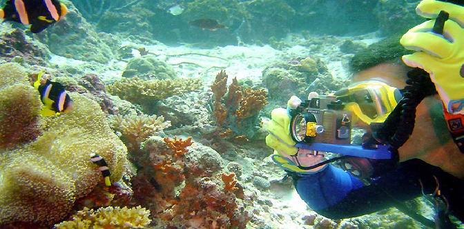 Relax Ocean. Музыка морских глубин смотреть