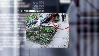 Роковой выстрел: знаменитый спортсмен против известного артиста