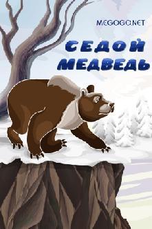 Седой медведь смотреть