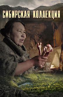 Сибирская коллекция смотреть