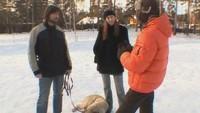 Собака в доме 1 сезон 6 выпуск