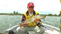 Трофеи Авалона Сезон-1 Большое Волжское путешествие: рыбалка на реке Большой Иргиз. Часть2