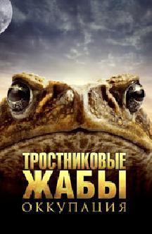 Тростниковые жабы: Оккупация смотреть
