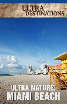 Ultra Nature: Miami Beach смотреть