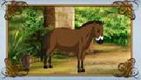 Уроки живой природы Сезон-1 Лошадь